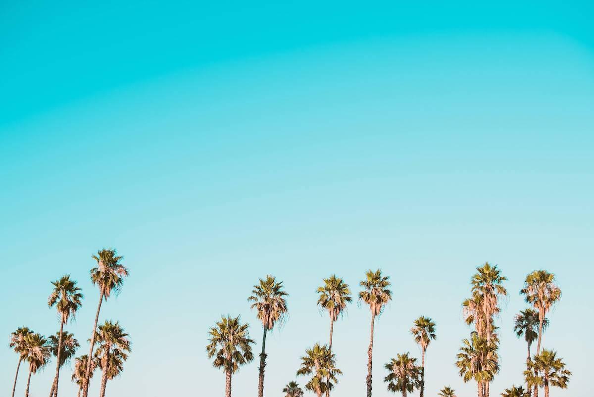 Comment passer des vacances sans nuage à l'horizon